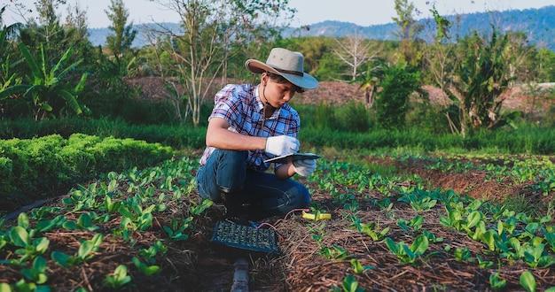 L'agricoltore asiatico controlla la qualità del suolo nella sua fattoria
