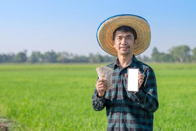 Uomo asiatico del coltivatore che tiene i soldi e lo smartphone tailandesi della banconota con il fronte di sorriso all'azienda agricola del riso verde