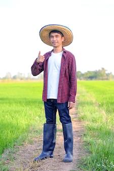 Sorriso e pollici asiatici dell'uomo del coltivatore in su all'azienda agricola del riso verde.