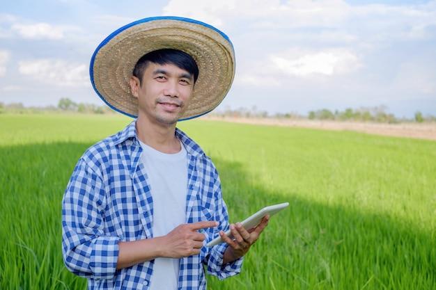Sorriso di uomo contadino asiatico e utilizzo di tablet intelligente presso fattoria di riso verde