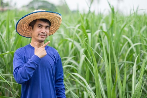 L'uomo asiatico del coltivatore indossa una maglietta blu e un cappello che si leva in piedi il pollice in su alla fattoria.