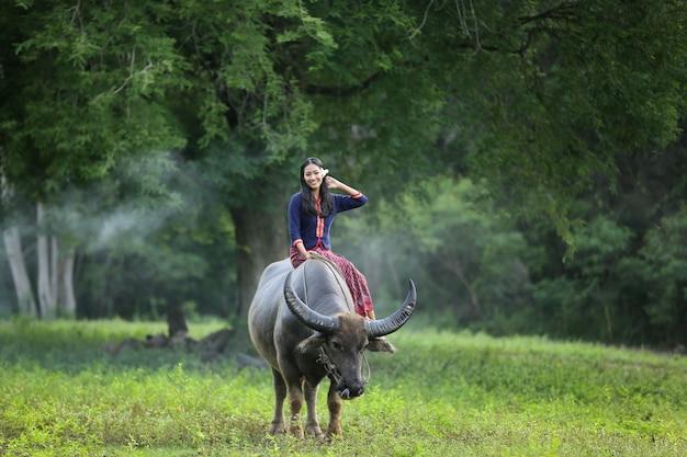 Coltivatore asiatico che si siede su un bufalo nel campo