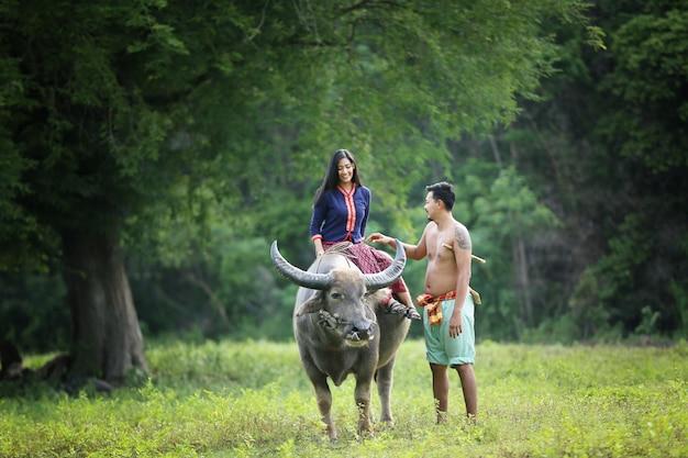 Coltivatore asiatico che si siede su un bufalo e uomo nel campo