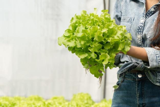 Donna asiatica dell'agricoltore che tiene insalata di verdure crude per controllare la qualità nell'azienda agricola idroponica