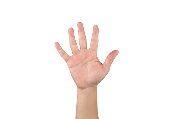 La mano asiatica mostra e conta 5 dita su sfondo bianco isolato con tracciato di ritaglio