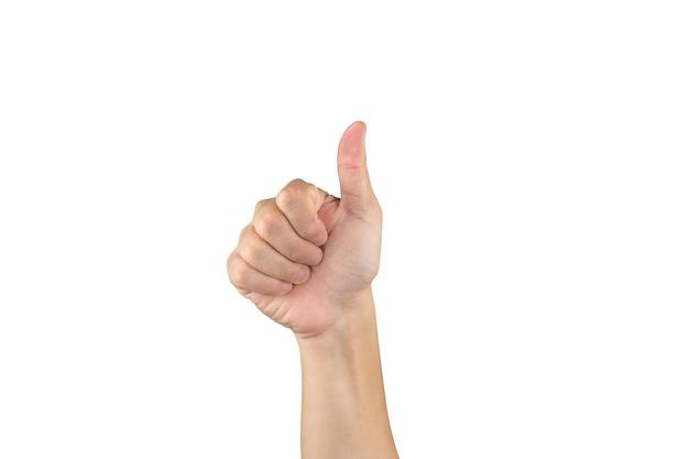 La mano asiatica mostra e conta 6 dita su sfondo bianco isolato con tracciato di ritaglio