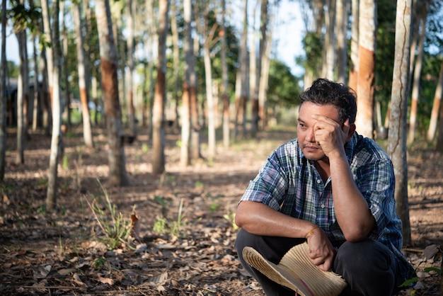 Agricoltore agricoltore uomo asiatico infelice dalla bassa produttività di rendimento alla piantagione di alberi della gomma