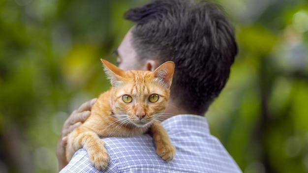 Asiatico di mezza età rilassante con gatto in cortile
