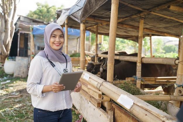 Medico veterinario musulmano asiatico check up animale da fattoria. il medico controlla la salute della capra