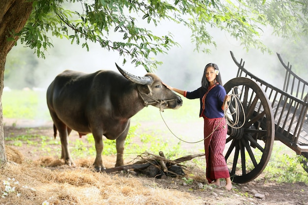 Donna asiatica in campagna, tornando a casa con il suo bufalo