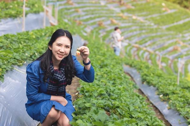Donna asiatica harwesting fragole fresche in azienda agricola campo con felicità emozione nella piantagione di angkhang chiangmai nel nord della thailandia