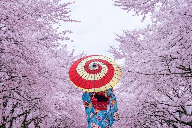 Donna asiatica che porta il kimono e il fiore di ciliegia tradizionali giapponesi in primavera, giappone.