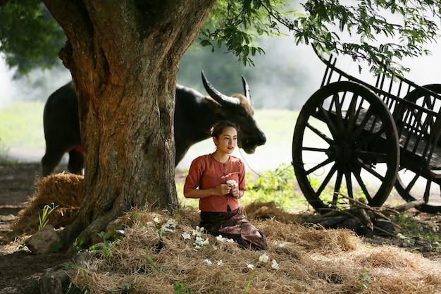 Donna asiatica che indossa il costume tradizionale tailandese in campo, ascoltando la radio accanto al bufalo