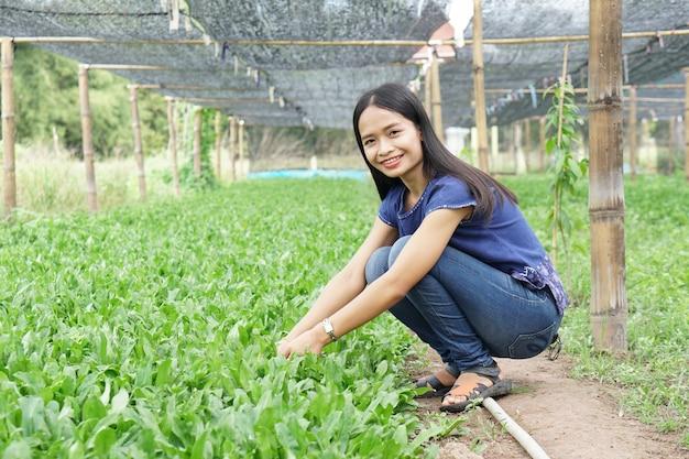 Donna asiatica che indossa una camicia bianca felice nell'orto