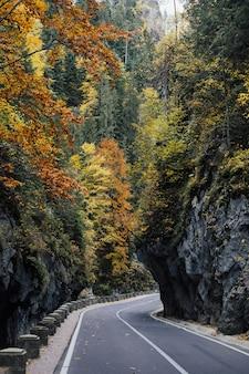 Strada asfaltata in autunno in montagna. paesaggio con bella strada di montagna vuota con un asfalto perfetto, alte rocce e alberi colorati.
