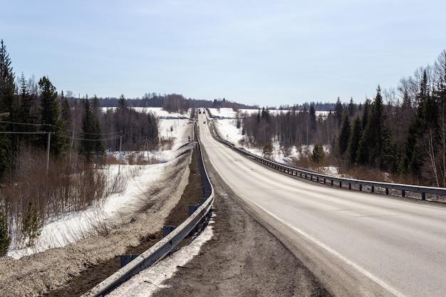 Strada asfaltata nella foresta. un bel viaggio