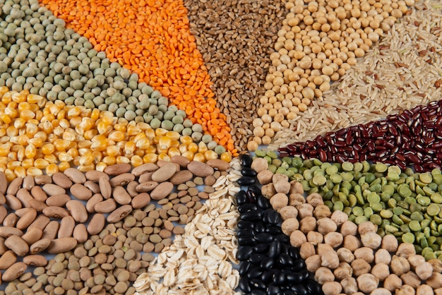 Assemblaggio con grani commestibili (semi) che formano un mosaico