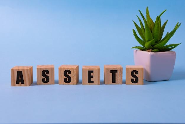 Beni parola da blocchi di legno con lettere cosa utile o preziosa beni concept assets