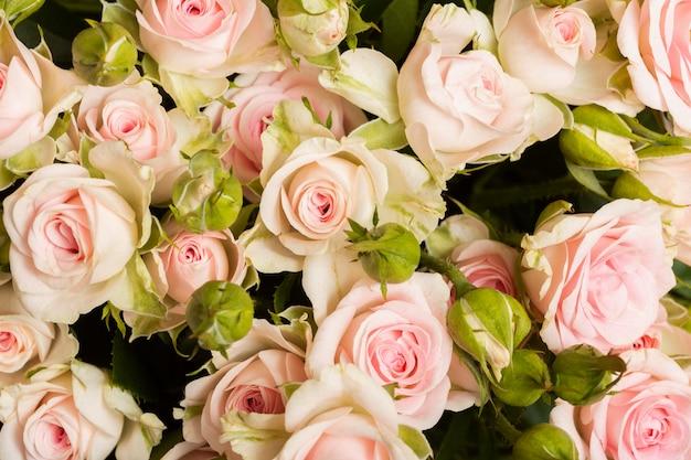 Assortimento di bellissimi fiori sullo sfondo