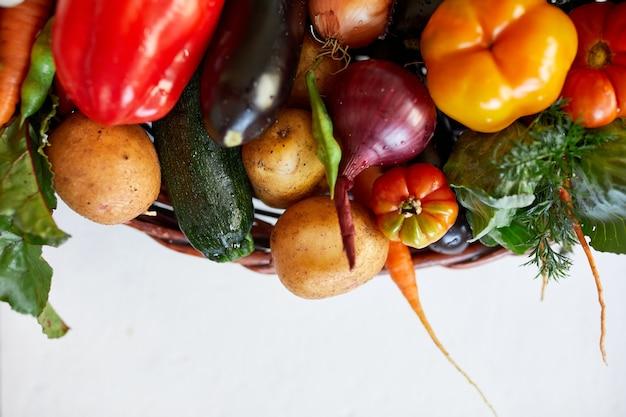Assortimento di verdure fresche in un cesto, cibo biologico sano e biologico su sfondo bianco, stile mercato di campagna, prodotti dell'orto, cibo vegetariano dietetico, alimentazione pulita.