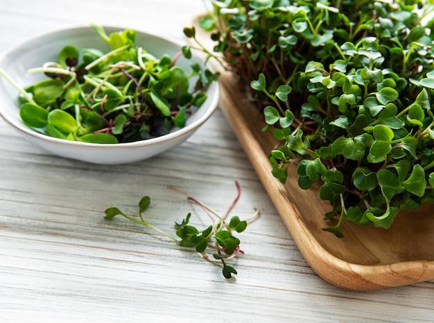 Assortimento di micro verdi su fondo di legno bianco, copia spazio, vista dall'alto. uno stile di vita sano