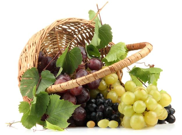 Assortimento della merce nel carrello dell'uva dolce matura, isolata su bianco