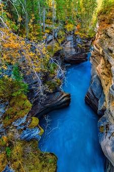 Canyon delle cascate di athabasca in autunno parco nazionale di diaspro canada