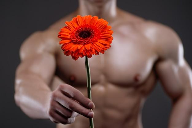 Uomo atletico che tiene in mano una gerbera. concetto di relazioni d'amore e romanticismo
