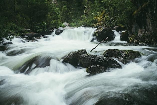 Paesaggio forestale atmosferico con rapide sul potente fiume di montagna tra rocce con muschi, alberi e vegetazione selvaggia. grandi massi coperti di muschio nel flusso d'acqua turbolento di potenza sfocata nel fiume di montagna.