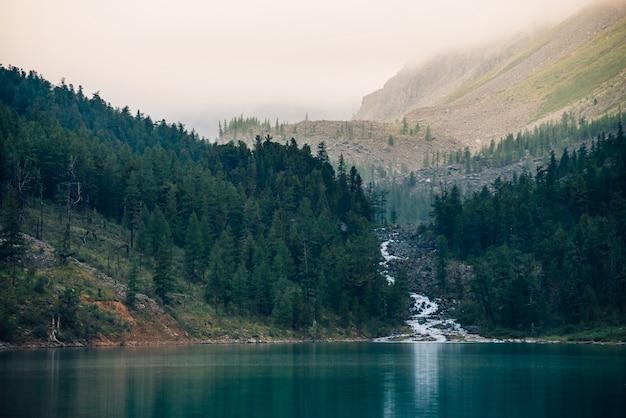 Atmosferico paesaggio con foresta vicino al lago di montagna e torrente di montagna nella nebbiosa mattina presto