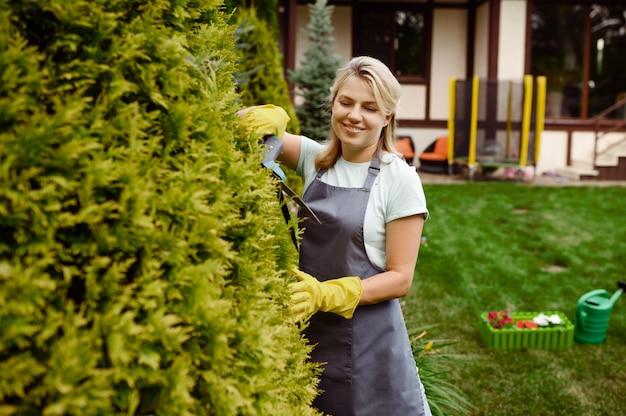 La donna attraente in guanti lavora con i potatori in giardino. il giardiniere femminile si prende cura delle piante all'aperto, dell'hobby del giardinaggio, dello stile di vita del fiorista e del tempo libero