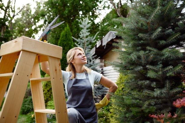 Donna attraente con potatori sale le scale in giardino. giardiniere femminile si prende cura di piante all'aperto, hobby di giardinaggio