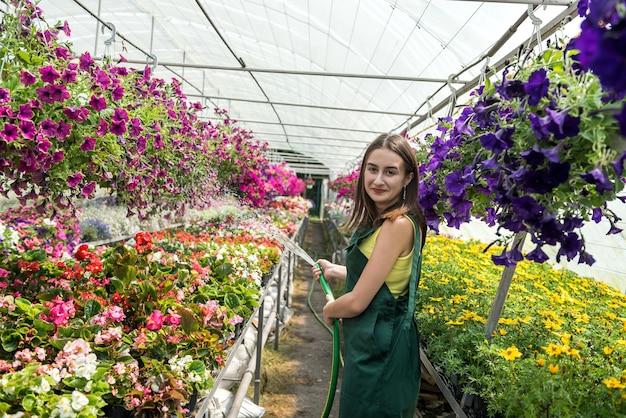 Attraente giovane giardiniere ogni giorno che si prende cura delle piante con un annaffiatoio in una serra. occupazione in serra