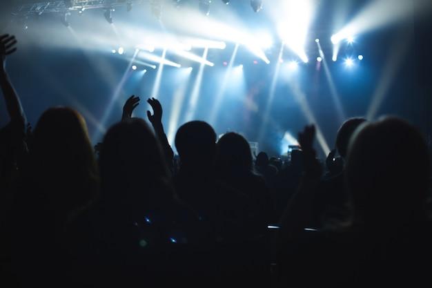Il pubblico che guarda il concerto sul palco.