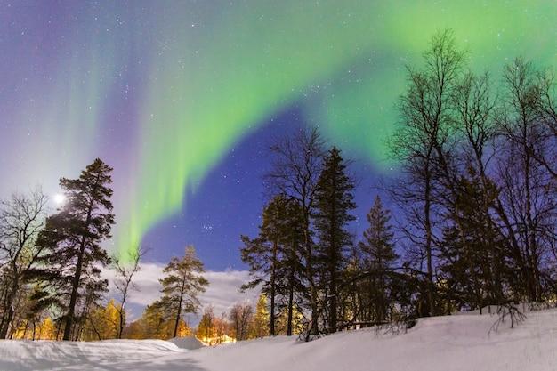 Aurora boreale su una foresta con illuminazione artificiale