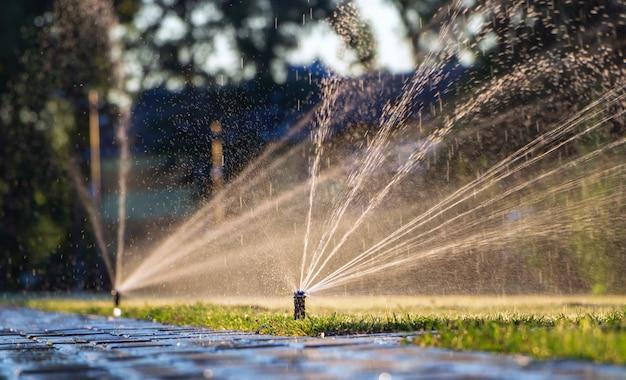 Sistema di irrigazione automatico che innaffia il prato. irrigazione del prato nel parco pubblico.