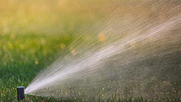 Il sistema di irrigazione automatico irriga l'erba del prato