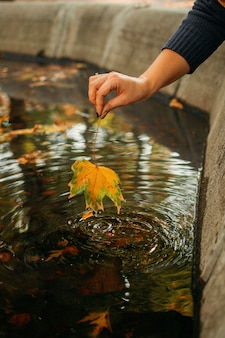 Lo sfondo autunnale cade il suo arrivo ciao autunno le cose a venire la bella mano femminile autunnale tiene l'acero