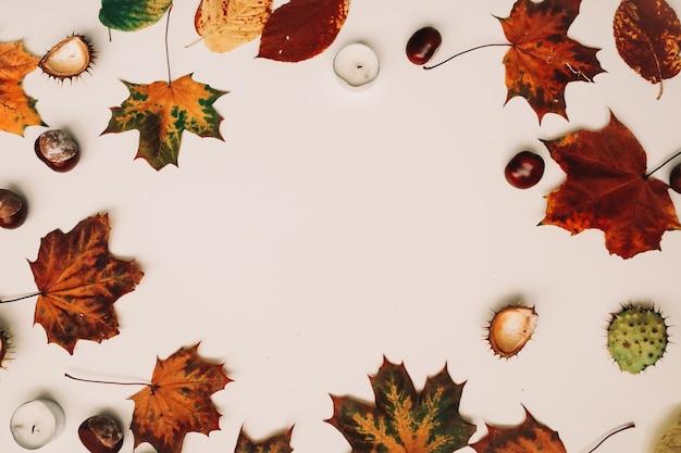 Sfondo autunnale e cornice con foglie secche
