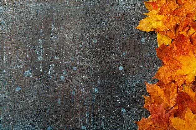 Sfondo autunnale con foglie d'acero autunnali su superficie metallica arrugginita
