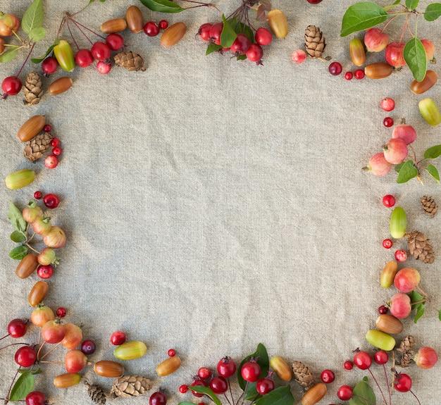 Sfondo autunnale con cornice di bacche, piccole mele selvatiche e foglie