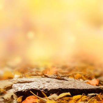 Sfondo autunnale con foglie. podio naturale su uno sfondo autunnale sfocato.