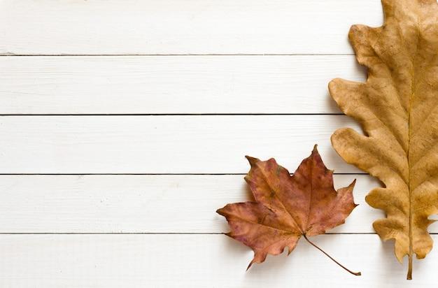 Sfondo autunnale con foglie di acero e quercia su sfondo di legno bianco vista dall'alto