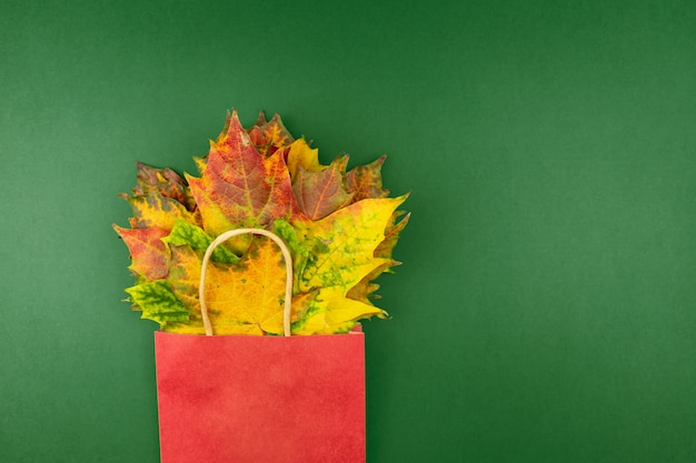 Autunno bouquet di foglie di acero secco in sacchetto di carta rosso su sfondo verde. concetto di acquisto di caduta con lo spazio della copia.