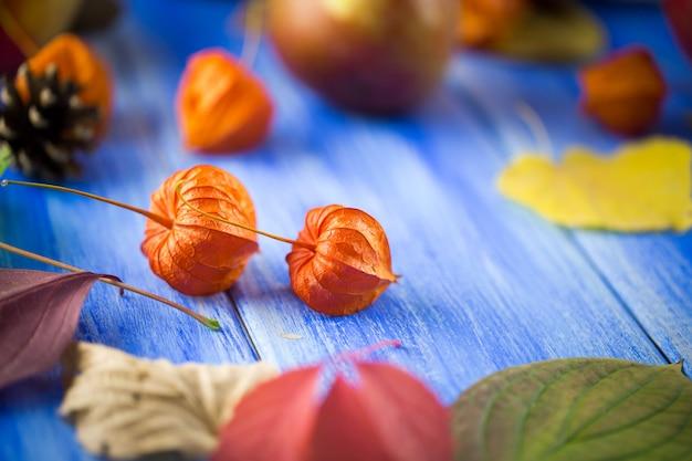 Autunno sfondo luminoso. fiori, foglie e frutti su un fondo di legno blu. sfondo per le vacanze autunnali e il giorno del ringraziamento.