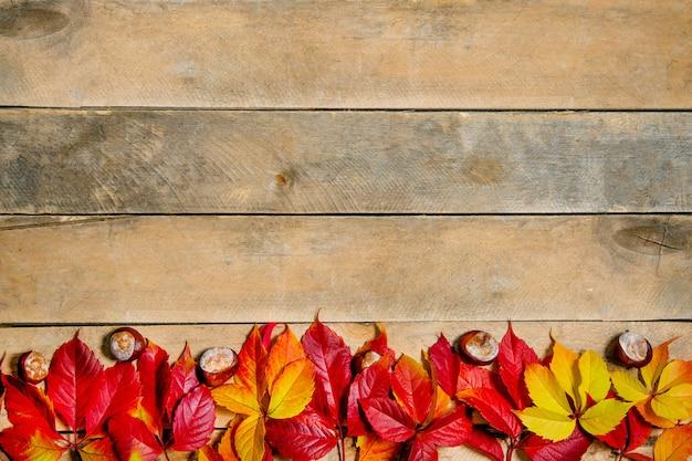 Foglie di autunno giallo-rosso brillante su fondo in legno. tavolo naturale fatto di assi. vista dall'alto flatlay