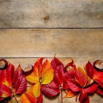 Foglie di autunno giallo-rosso brillante sul tavolo di legno, piatto laici