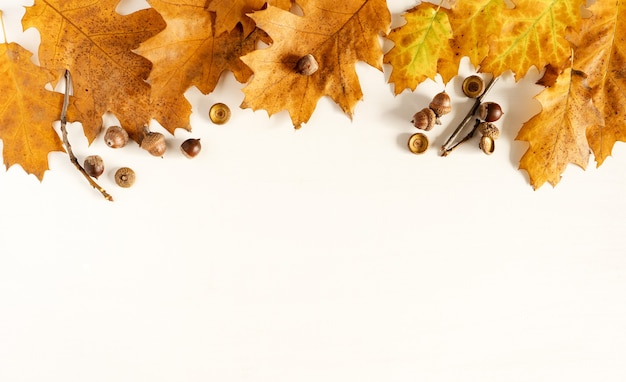Autunno. foglie cadute colorate, ghiande su un fondo bianco di legno