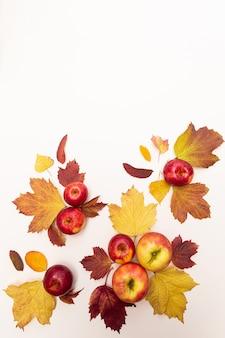 Mele della composizione in autunno e foglie cadute colorate. concetto di vendemmia