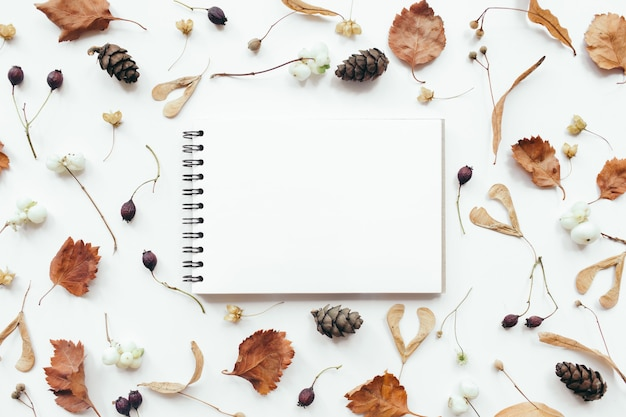 Composizione autunnale. foglie di autunno, taccuino su priorità bassa bianca. autunno, concetto di caduta. appartamento laico, vista dall'alto, copia dello spazio